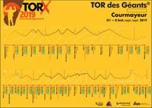 Vascos en Tor Des Géants 2019