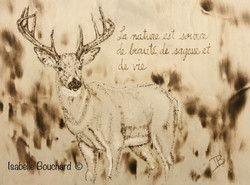 Source;Isabelle;Bouchard;artiste;acrilyq