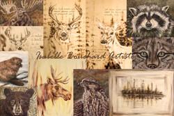 CARTE postale 4x6 animaux Isabelle Bouchard artiste sans noir