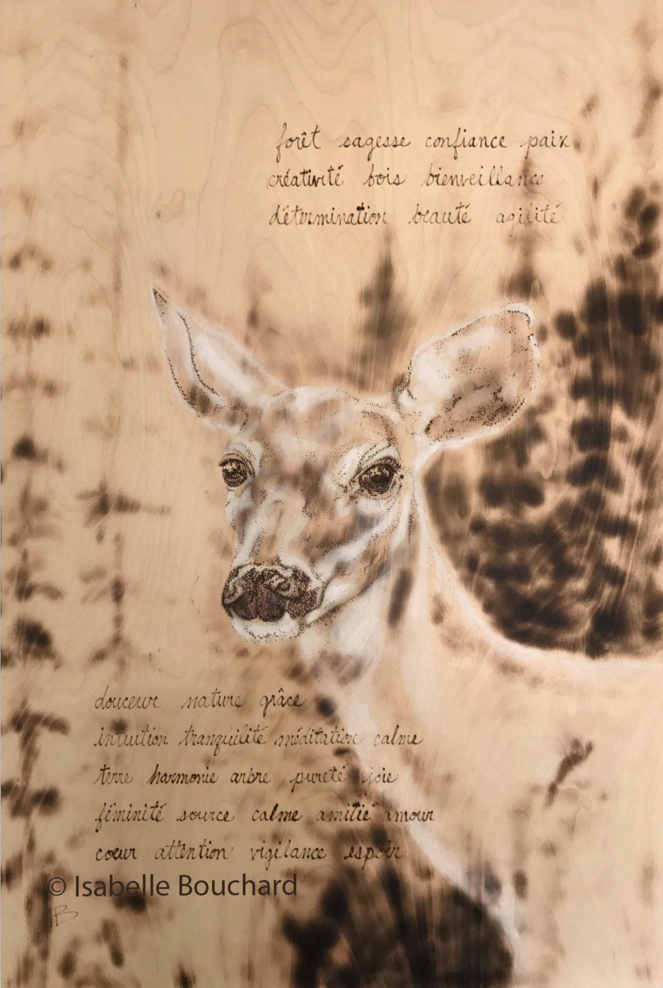 Isabelle Bouchard Artiste Biche 24x36 20