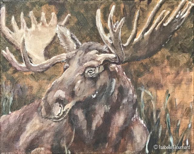 Isabelle_Bouchard_artiste_Quebec_2017_orignal