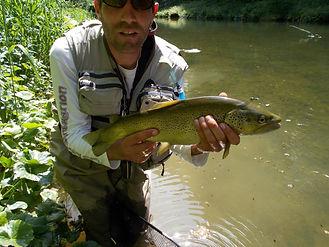 guide de pêche franche comte
