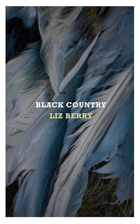 Liz Berry book cover for Black Country.j