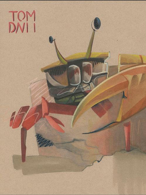 Aquarium Study: Fiddler Crab