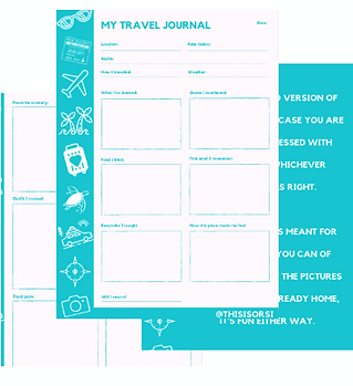 travel journal teal