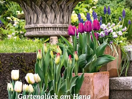 'Schweizer Garten' stellt unseren Garten vor