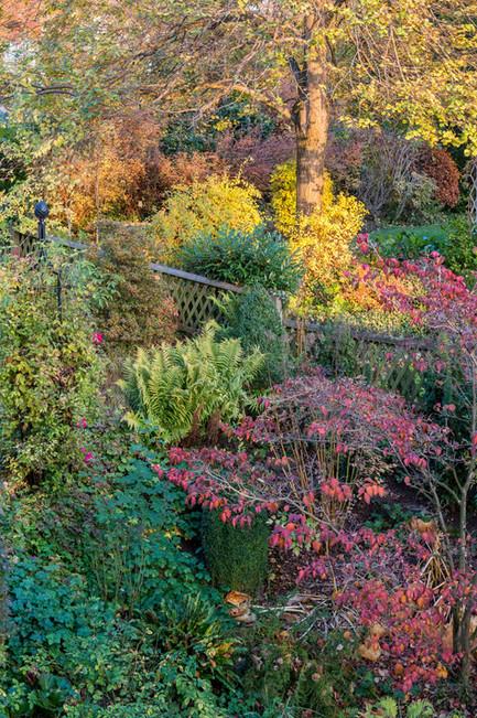 Milde Herbstfarben