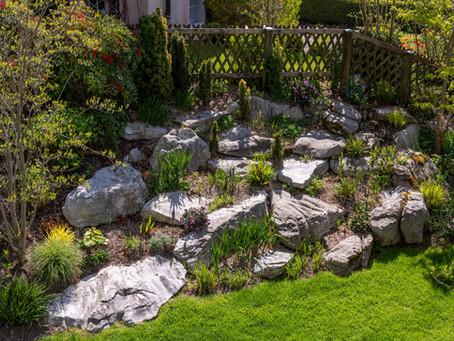 Frühlingserwachen im Steingarten