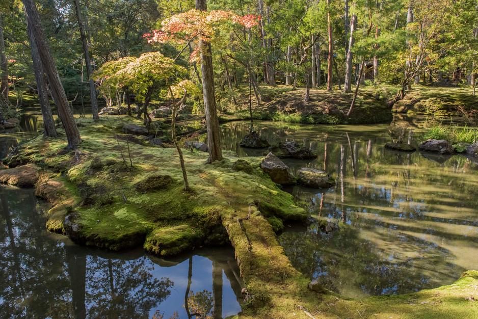 Saigon-Ji, auch Kokedera (Moosgarten) ge