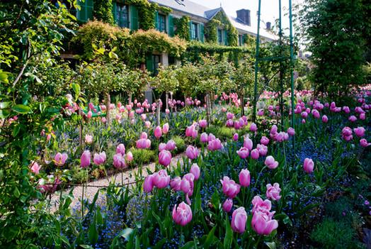 Tulpenbeete im Malergarten