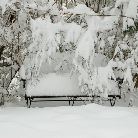 Ein richtiger Winter!