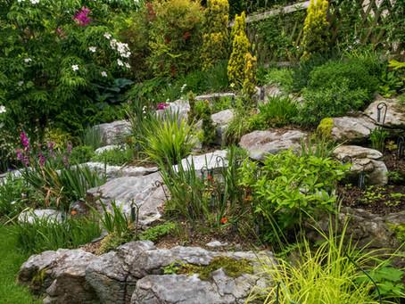 Der Steingarten im Juni