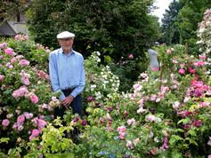 Ein Altersgarten voller alter Rosen