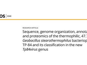 New scientific publication