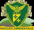 CSLI_Ambientale_200.png