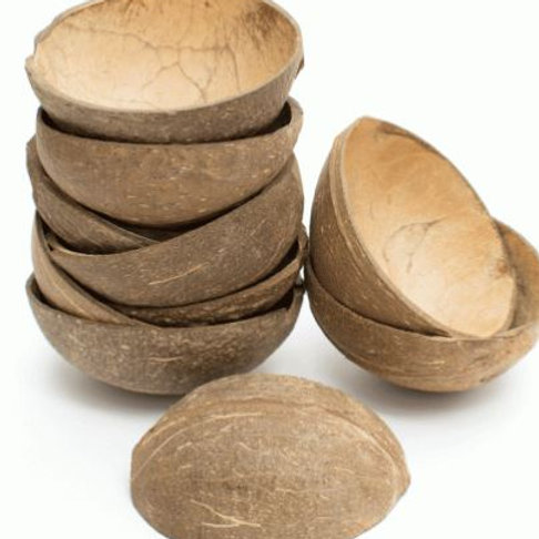 coconut halves for early years play, discover sound, texture and shape