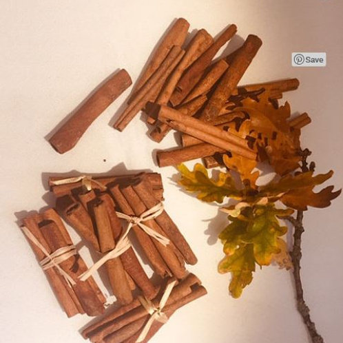 A small collection of cinnamon sticks as an early years educational resource