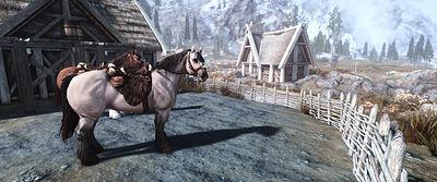 Claim a Horse