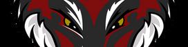 Darkfox127 Logo