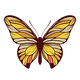 bbp-butterfly.png