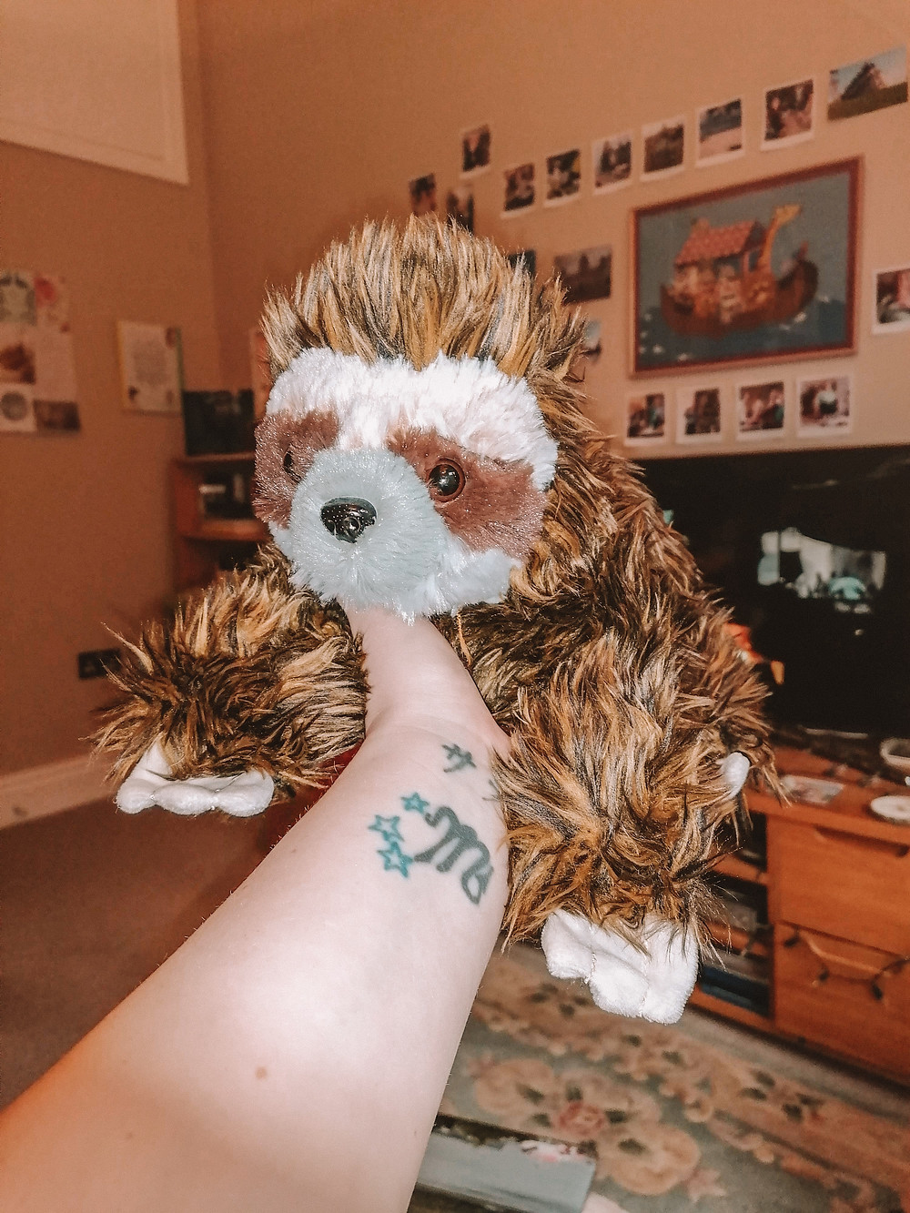 Sarah holding up a stuffed sloth toy