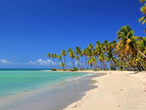 Amazing Deal to Dominican Republic