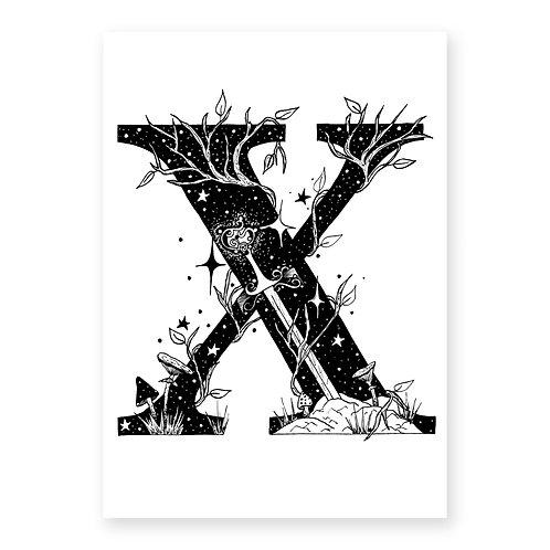 Fairytale Letter X