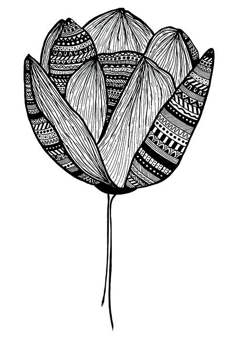 Black and white drawing of a tulip with a pattern