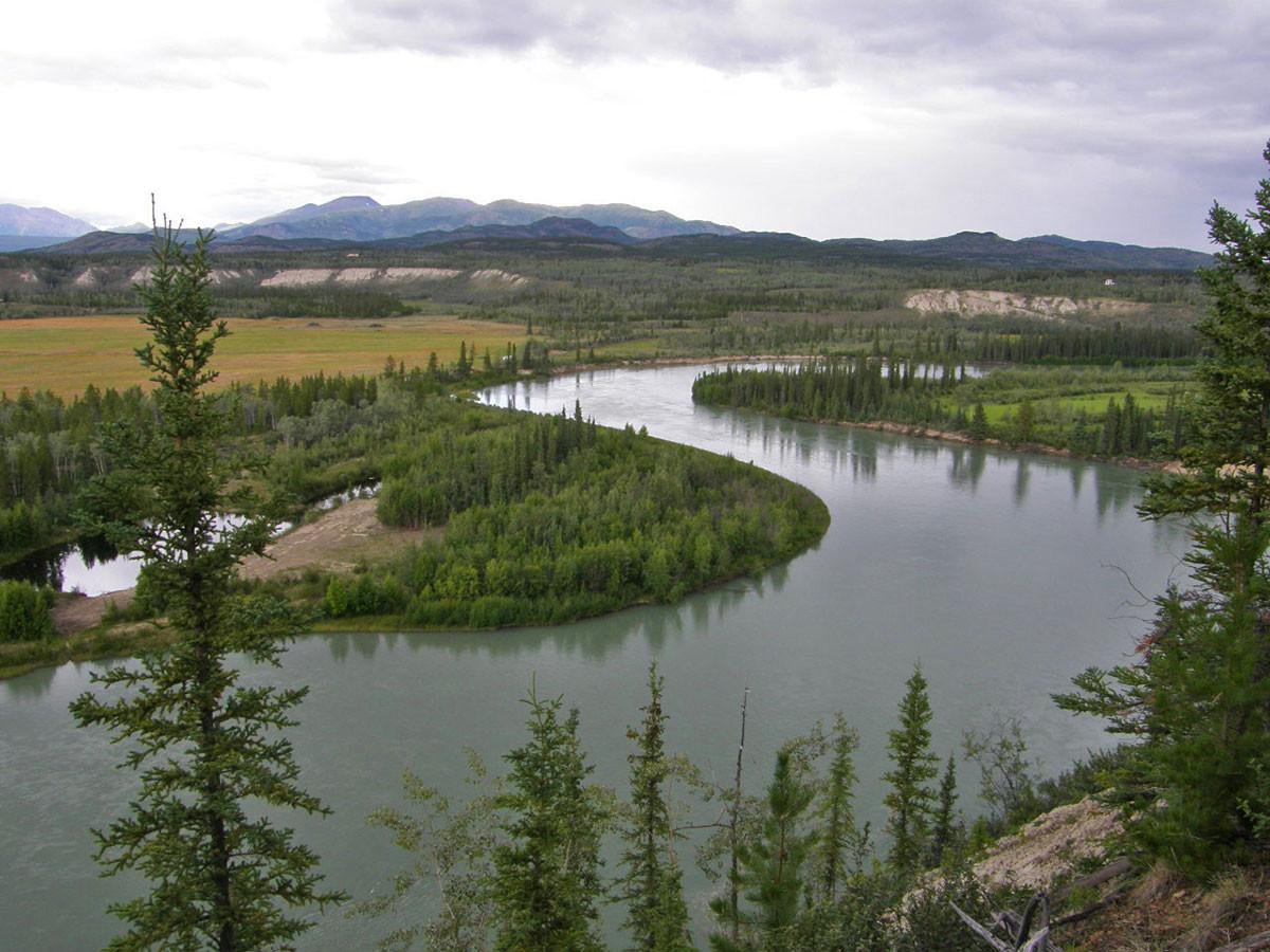 takhini-river-view.jpg