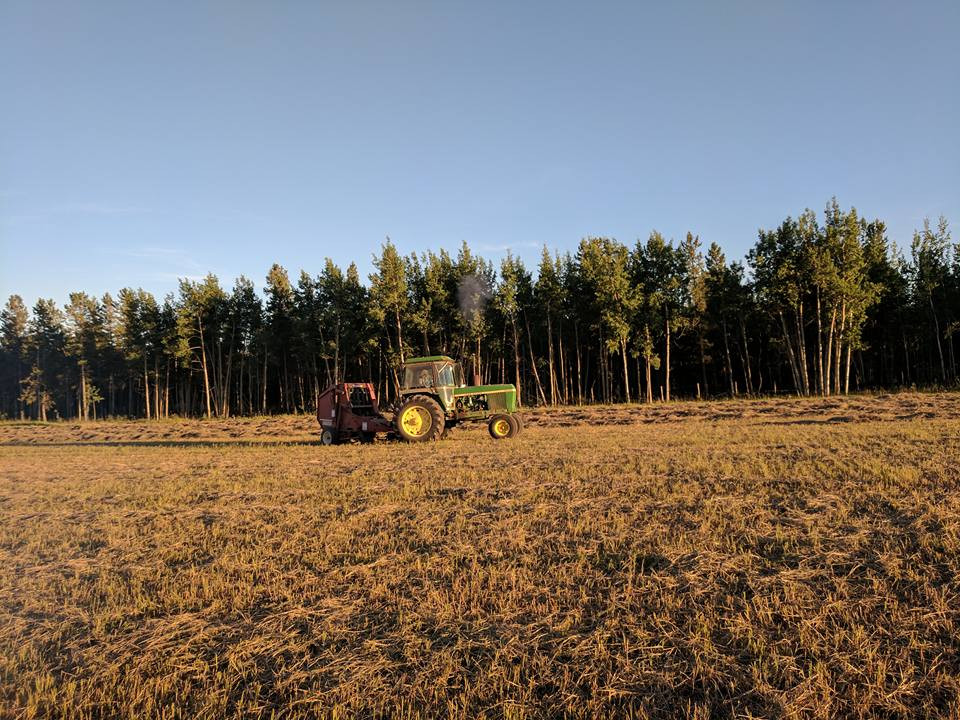Haying our own grass