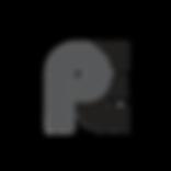 PE Logo - Transparent.png