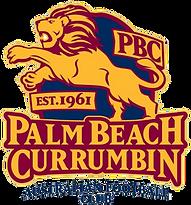 Palm_beach_currumbin_fc_logo.png