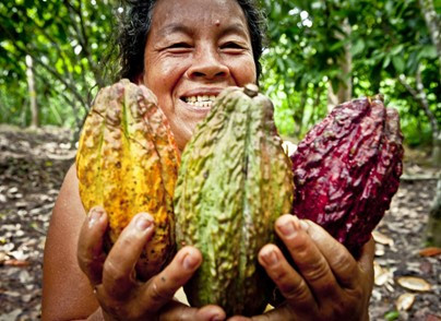 Peru, the land of origin of cocoa