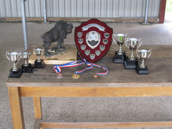 A Selection of WRPC Trophies