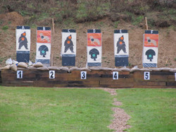 Grizzly Bear Comp Targets