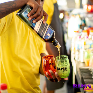 Events Barbados_Bliss Beach-21.jpg