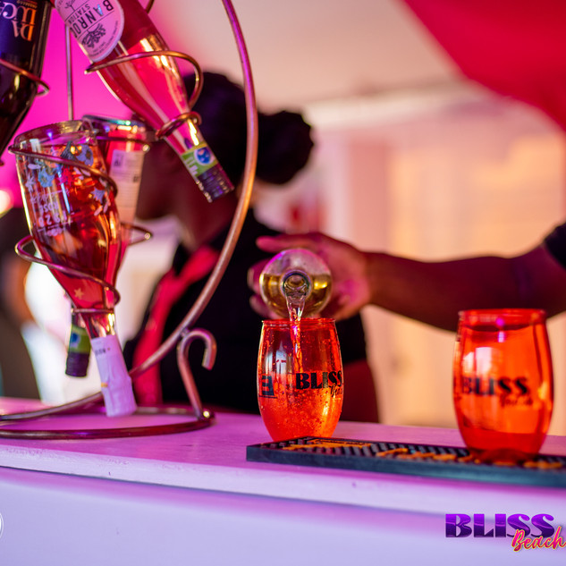 Events Barbados_Bliss Beach-42.jpg