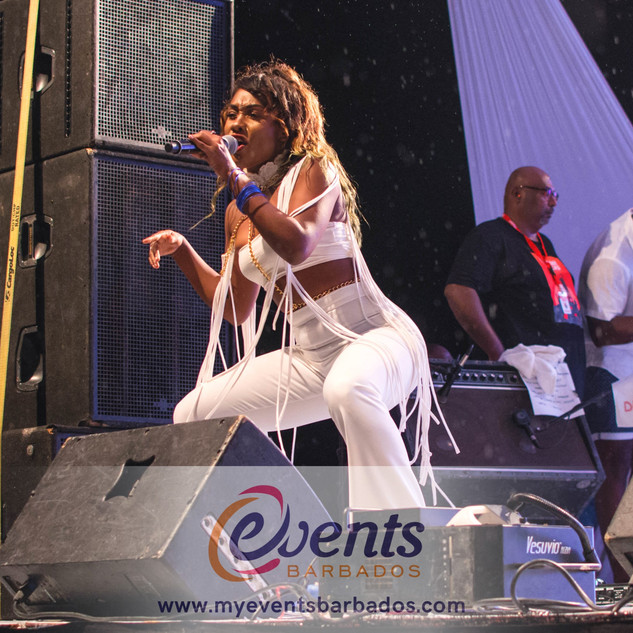 EVENTS BARBADOS_Tipsy_2017 (HQ)-041.jpg