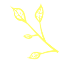 Sparks_Icons_Yellow-04_edited.png