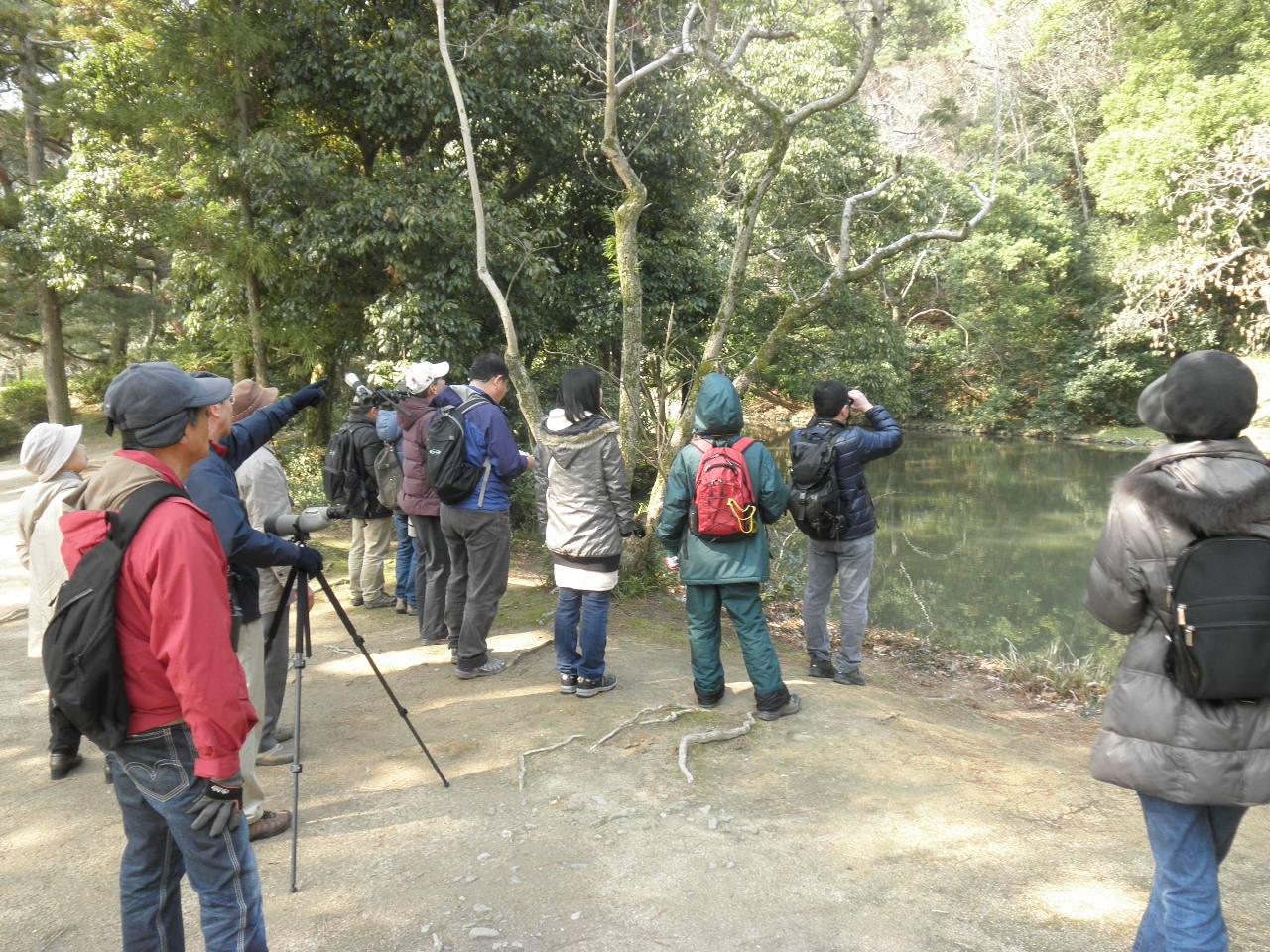 「栗林公園で野鳥を観察しよう」H25年3月11日
