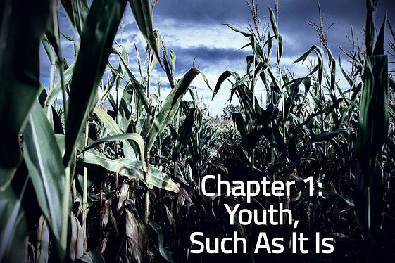 Chapter 1: Youth, Such As It Is