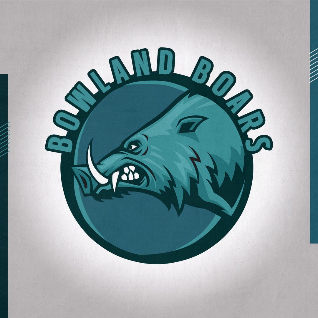 Bowland Boars logo.jpg