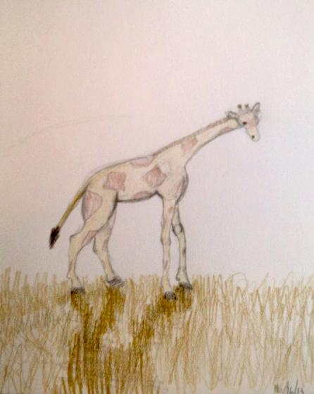Marina_Giraffe.jpg