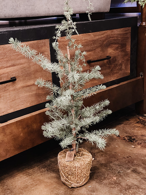 """31-1/2"""" Faux Tree"""