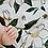 Thumbnail: Magnolia Swaddle