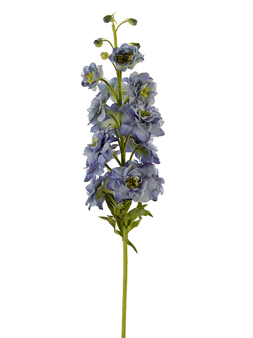 Blue Delphinium Stem