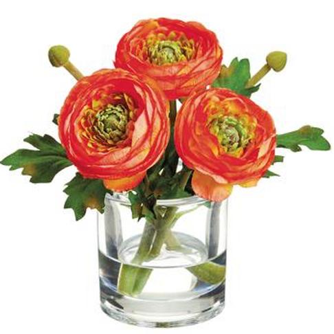Ranunculus in Glass Vase