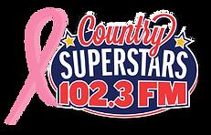 CSS - pink ribbon logo.png