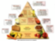 Dash Diet Pyramid