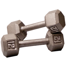 12 lb dumbbells.png
